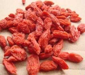 枸杞多糖 Wolfberry Extract Powder