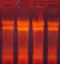 液体样品RNAout(186-10) 产品图片