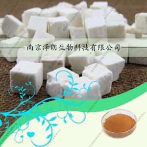 茯苓提取物 茯苓粉 茯苓来料代加工 厂家南京泽朗