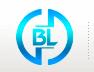 上海丙林电子科技有限公司公司logo