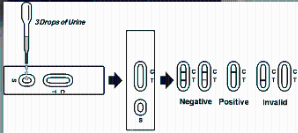 违禁品滥用快速检测试剂(AMP)产品图片