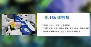 北京试剂盒猪白介素1β (IL-1β)ELISA Kit订购