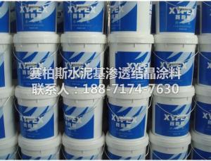 XYPEX水泥基渗透型防水材料 混凝土防水保护层 产品图片