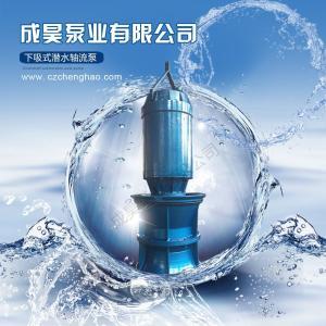 河道強排水潛水軸流泵
