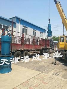 350潜水轴流泵 ,500,600潜水轴流泵制造厂家