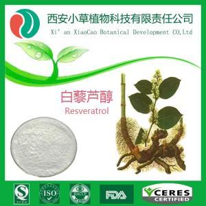 白藜芦醇98%虎杖提取物 产品图片