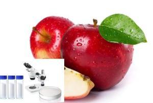 氨基葡萄糖(氨糖)Glucosamine 3416-24-8 25kg