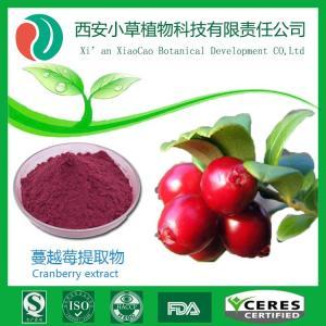 蔓越莓  蔓越莓提取物 产品图片