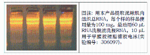 柱式动物RNAout(柱式Trizol)71201(替换Trizol) 产品图片