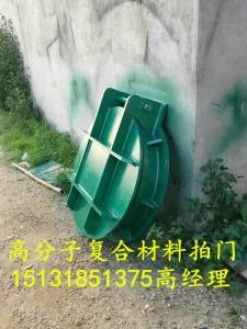 东莞HDPE高分子拍门|HDPE高密度聚乙烯拍门|HDPE复合拍门|塑料拍门供应商