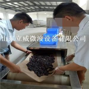 牛肉干干燥设备 牛肉干微波干燥设备