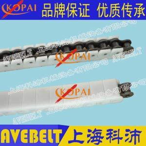 40EPT防静电塑料链条