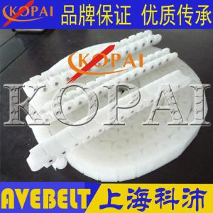 60EPT带盖罩塑胶链条