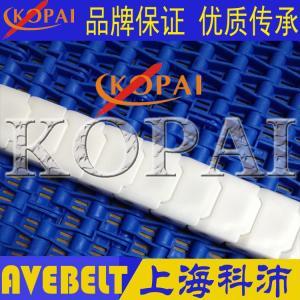 40EPT耐酸碱耐腐蚀链条