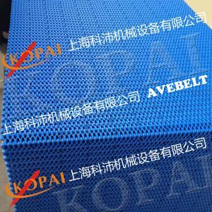 OPB耐高温模塑网带