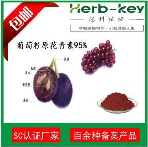 水溶性葡萄籽提取物95% 98%