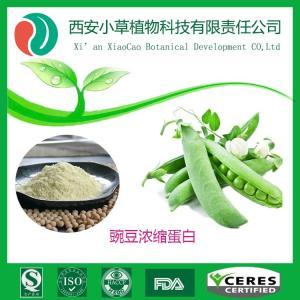 豌豆浓缩蛋白