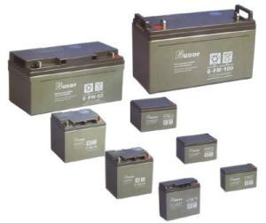 BUDDY宝迪蓄电池FM12-38AH 12V/38AH/C10/10HR美国进口电池