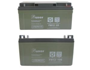 BUDDY宝迪蓄电池FM12-6*H 12V/6*H/C10/10HR直流屏配电池柜电池