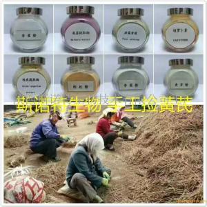 黄芩喷雾干燥粉 产品图片
