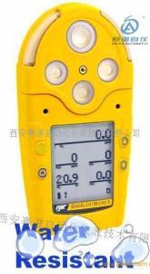 西安赛谱供应BW 复合气体检测仪产品图片