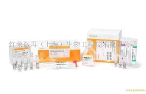 illumina公司基因测序试剂盒及生物试剂和Rubicon上海授权代理商单细胞全基因组测序试剂盒现货供应产品图片