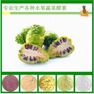 诺丽果酵素粉