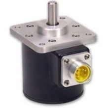 TWK傳感器IW254/100-0.25-KFN-KHN