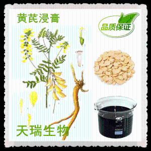 黄芪浓缩液 黄芪提取物 厂家可定制生产