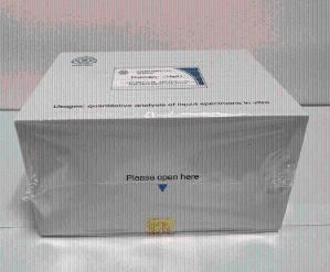 Human 8-isoPGF2α ELISA Kit折扣