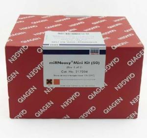 可逆性铜染试剂盒1套说明书 产品图片