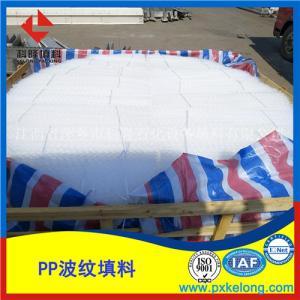 PP塑料孔板波纹填料SB-250Y型号江西萍乡科隆生产厂家直销产品图片
