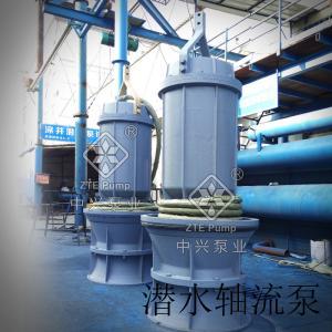 潛水軸流泵制造生產廠家