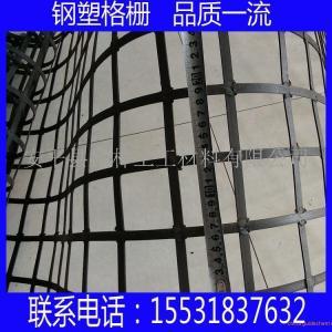 海西鋼塑土工格柵批發 鋼塑土工格柵規格報價