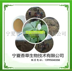葫芦巴提取物15:1 宁夏种植葫芦巴叶粉 葫芦巴籽速溶粉   葫芦巴浸膏 产品图片