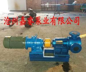 NYP30-1.0高粘度轉子泵石油 化工 食品專用泵
