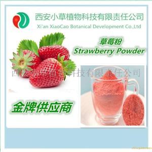 专业厂家现货供应天然草莓粉 草莓粉 草莓汁粉 速溶草莓粉