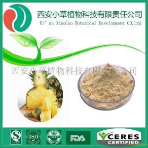 专业厂家现货供应 菠萝粉 菠萝果粉 菠萝纯粉菠萝汁粉 纯天然水溶