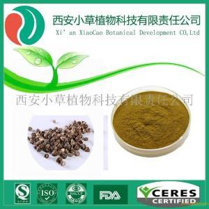 辣木籽粉,辣木籽提取物,药食同源辣木籽粉