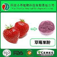 現貨供應草莓果粉 水果粉 草莓提取物 廠家直銷 量大從優