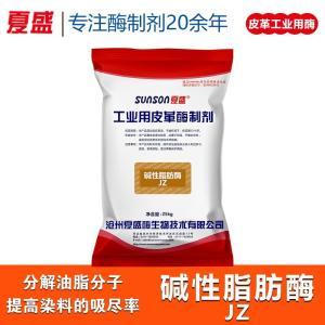 碱性脂肪酶JZ 均匀脱脂 绒面皮革改良复合酶 厂家直销批发 产品图片
