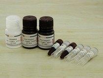 进口试剂草酸铵Sigma 25403