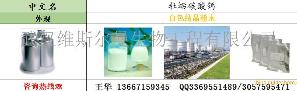 牡蛎碳酸钙
