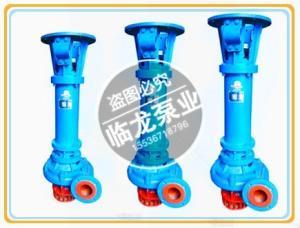 臨龍立式污水泥漿泵100NPL120-16