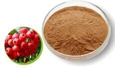 山楂果粉 食品资质