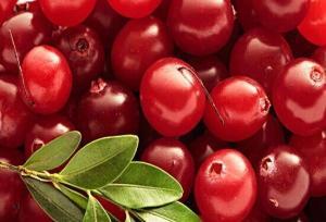 蔓越莓浓缩汁粉