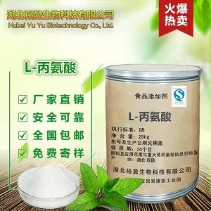 食品级氨基酸华阳L-丙氨酸厂家直销 格