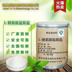 食品级氨基酸华阳L-赖氨酸盐酸盐厂家直销 格