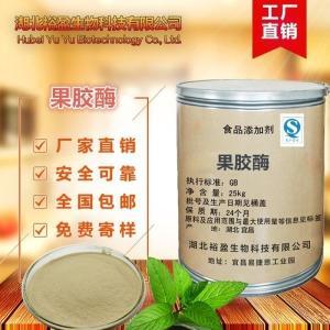 武汉批发供应饲料级酶制剂果胶酶价格