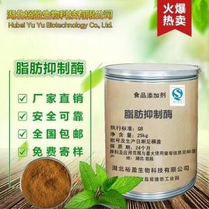 厂家直销食品级酶制剂脂肪抑制酶价格减肥专用